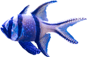 texture-blue-and-light-blue-fish